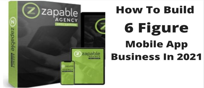 zapable Agency 2021 review